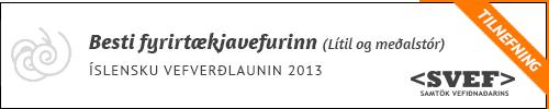 besti-fyrirtaekjavefurinn-minni-2013